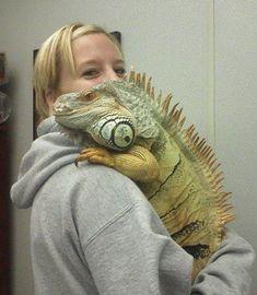 Gayle Fairbanks with her pet iguana Eugene. Eugene!