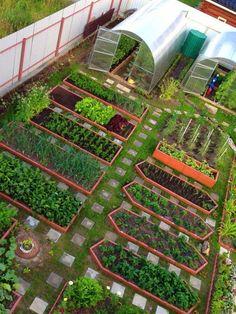 Vegetable Garden Planning, Backyard Vegetable Gardens, Outdoor Garden Decor, Veg Garden, Vegetable Garden Design, Garden Beds, Outdoor Gardens, Home And Garden, Garden Cafe