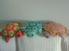 Turtles. Different colors.