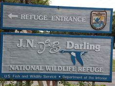 "J.N. ""Ding"" Darling National Wildlife Refuge located on Sanibel Island is part of the largest undeveloped mangrove ecosystem in the US"