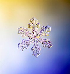 Image: A snowflake, with the classic 6-sided star shape, photographed under a microscope. (© Design Pics Inc./Alamy)