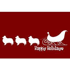 Sheltie Holiday card
