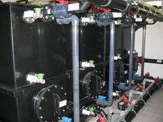 Urine storage tanks