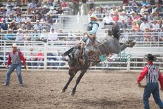 50 best for the love of sisters or images rodeo rodeo life rh pinterest com