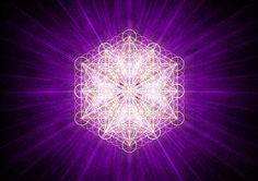 violetflame-floweroflife
