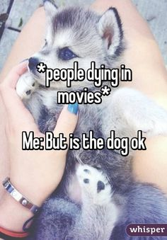 *people dying in movies*  Me: But is the dog ok