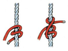 Seven Essential Knots for Sailors