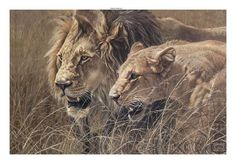 The Royal Couple Limited Edition Print