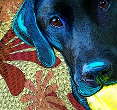 Lab Pet Art Portrait....  so want to to this