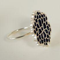 Ja033_Haeckel-anillo