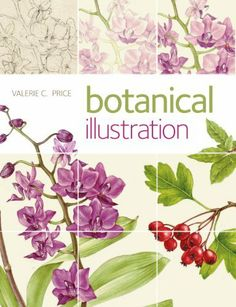 Botanical Illustration by Valerie Price, http://www.amazon.com/dp/1408152037/ref=cm_sw_r_pi_dp_e1BQtb09PM2W3