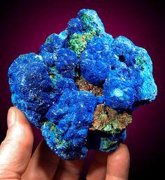 Azurite crystals and Malachite. Congo
