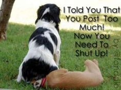 you post too much :) we love this @ http://bit.ly/wKZBsN