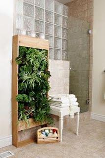 living wall outside...herbs?