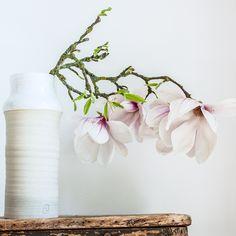Magnolias et vase en grès Géraldine K, céramiste (www.geraldine-k-ceramiste.com) Magnolias, Inspiration Boards, Ikebana, Vases, Flowers, Home Decor, Pottery, Plant, Magnolia Trees
