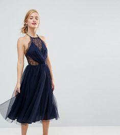 ASOS PETITE Lace Paneled Tulle Mesh Midi Dress - Navy