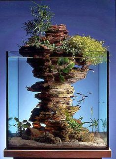 11 best aquascaping design ideas to decor your aquarium 00002 Aquarium Design, Home Aquarium, Nature Aquarium, Aquarium Fish, Vivarium, Paludarium, Aquarium Terrarium, Garden Terrarium, Indoor Water Garden