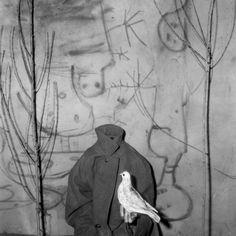 Roger Ballen, 'headless,' 2006, Alex Daniels - Reflex Amsterdam