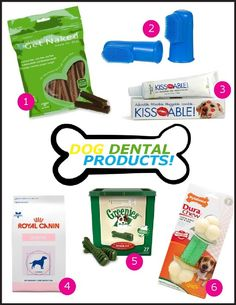 6 fantastic dog dental care products! #dogdental #dogteeth #dentalhealth