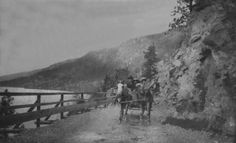 A horse and buggy along Kalamalka Lake (the 'Lake of Many Colors') in the central Okanagan BC Horse And Buggy, Historical Pictures, History Facts, Sicily, British Columbia, Vintage Photos, Vancouver, Photo Galleries, Museum