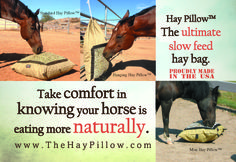 The ultimate slow feed hay bag. Offered in 1 and 1 mesh sizes. Easy Fill, Horse Stables, Mesh, Horses, Nature, Horse Barns, Horse, The Great Outdoors, Words