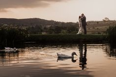 Shown here are a few sample images selected from an album that I recently created for office use. Cradle Valley Guest House in Muldersdrift. Duck Pond, Wedding Album, Just Married, Natural Light, Bride Groom, Big Day, Wedding Photography, Sunset, Image