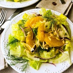 Spring is in the air, we can feel it, because we're craving fresh light salads, such as this aromatic shaved fennel with sweet orange segments over romaine for an excellent tasting Fennel Orange Salad {Insalata di Finocchio e Arancia}. To top it off, we've made a tangy orange and lemon vinaigrette to dress and compliment the salad.  … Fennel And Orange Salad, Fennel Salad, Lemon Vinaigrette Dressing, Side Salad Recipes, Romaine Salad, Ground Beef Recipes Easy, Grilled Vegetables, Lemon Recipes, Vegetable Salad