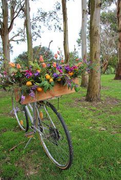 bike flowers - I always carry flowers on my bike. :)