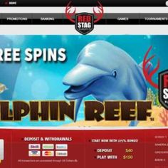 Red Stag Casino 50 Free Spins on Dolphin Reef Slot Best Online Casino, Online Casino Games, Online Casino Bonus, Online Games, Dolphin Reef, Free Casino Slot Games, Play Free Slots, Free Rewards, Dolphins