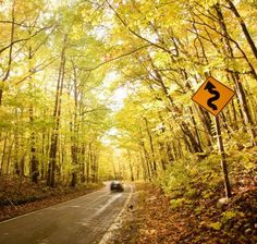 M-119, better known as the Tunnel of Trees, is your favorite Midwest fall drive. Gold-dappled boughs arch over the deliciously curvy road  snaking north of Harbor Springs, following Lake Michigan for 20 miles.