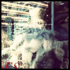 #beverlyhills #rodeodrive #holidays #mannequin #windows #visuals #fashion #styling #verveofla™ #2011 #Christmas