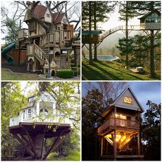 Casa na árvore                                                       …