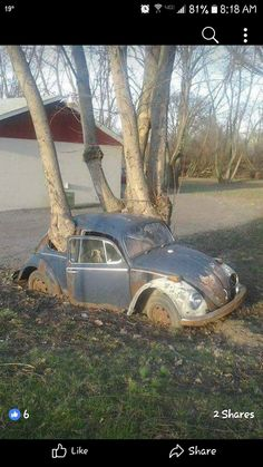 Wasted VW Bug