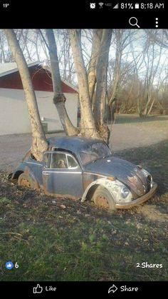 Wasted VW Bug