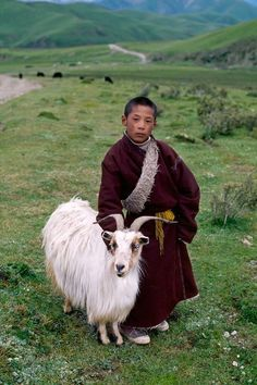 All Creatures Great and Small, Tibet photo by Steve McCurry We Are The World, People Around The World, Steeve Mc Curry, Beautiful World, Beautiful People, Le Tibet, World Press Photo, Amor Animal, Tibet