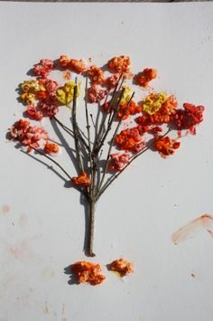 Have a popcorn snack then make Fall themed trees with leftovers.. using tempera paint powder and ziplocs.. fun craft for kids!