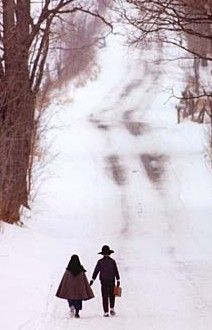 Amish Kids in Snow