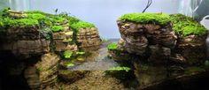 Minifigure in a stunning paludarium Exotic Aquatic: Long Way Down