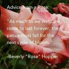 """The Redneck Rosarian share the wit and wisdom of roses in his popular series """"Advice from a Rose"""""""