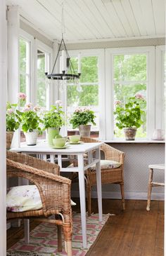 a porch room with geraniums