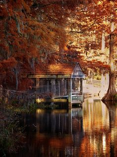 Autumn beauty of a cabin on water's edge. I NEED to spend some quiet time here. Just me and a bag full of books. Beautiful World, Beautiful Places, Beautiful Pictures, Magic Garden, Autumn Cozy, Dark Autumn, Autumn Morning, Cabins In The Woods, Autumn Leaves
