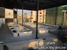 aa Plastic Planter, Planters, Deck, Outdoor Decor, Home Decor, Front Porch, Decks, Plants, Interior Design