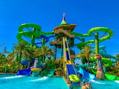 24 Amazing Tips for Universal Volcano Bay [Must Read! Vacation Places, Dream Vacations, Places To Travel, Places To Visit, Volcano Bay Orlando, Aqua Resort, Scenic Photography, Night Photography, Photography Tips