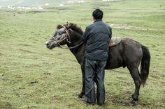 Impressionen aus dem tibetischen Alltag in Qinghai, China China, Horses, Animals, Travel Report, Culture, Animales, Animaux, Animal, Animais