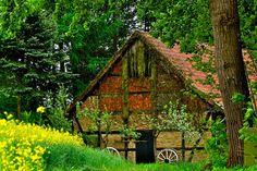 Kleines Haus am Wald by Uwe58, via Flickr