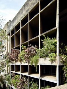 AD Classics: Mill Owners' Association Building / Le Corbusier Le Corbusier Chandigarh, Passive Design, Brutalist, Architecture Details, Modern Architecture, Concrete Building, Green Facade, Archi Design, Amazing Buildings