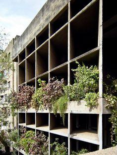 AD Classics: Mill Owners' Association Building / Le Corbusier / primeros muros verdes