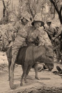 Simpson and his donkey ~ The ANZAC Spirit: To cope with the tragic losses our country saw at Gallipo Anzac Day Australia, Lest We Forget Anzac, Anzac Soldiers, Funny Vintage Ads, Remembrance Day, World War One, German Shepherd Dogs, Military History, Wwi
