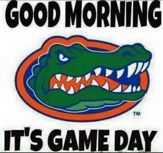 University of Florida Gators College Sports Basketbal Uf Gator, Gator Logo, Gator Game, Gator Football Schedule, College Football, Football Memes, College Sport, Football Stuff, Football Baby
