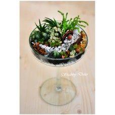 Terrarium - Fairy garden Shabby, Glass Ball, Terrarium, Fairy, Interior Design, Garden, Home Decor, Deco, Terrariums